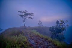 Morning fog Stock Photos
