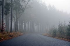 Morning fog among the trees in the road forest. Stock Photography