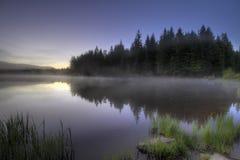 Morning Fog at Trillium Lake Royalty Free Stock Images