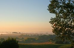 Morning Fog in the Valley. Foggy vineyard valley at sunrise Stock Images