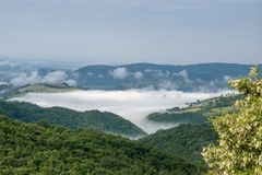 Morning fog in the valley Stock Photography