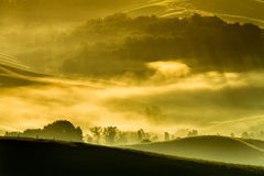 Morning fog in the valley of the Tuscan Stock Image