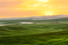 Morning fog view on farmland in Tuscany, Italy Royalty Free Stock Photography