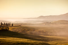 Morning fog view in Tuscany Stock Photo