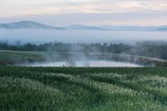 Morning Fog View at Valley d'Orcia Royalty Free Stock Image