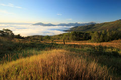 Morning fog in the Wasatch Mountains. Royalty Free Stock Photos