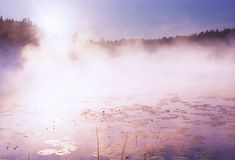 Morning fog on wild forest lake in Karelia Stock Photography