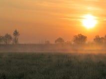Morning foggy. Sunrise and morning fog Royalty Free Stock Photo