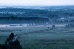 Morning foggy field in the morning. Royalty Free Stock Image