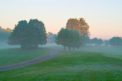Morning Foggy Landscape. Autumn morning landscape with trees and road in a field Royalty Free Stock Image