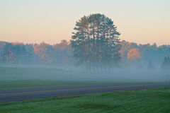 Morning Foggy Landscape Royalty Free Stock Images