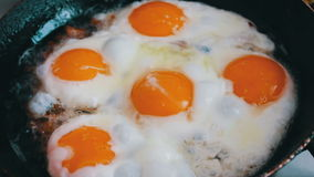 Morning fried eggs is roasted in a pan on the home kitchen stock video footage