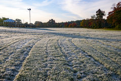 Morning frost on field Royalty Free Stock Photography