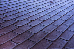 Morning frost icing on red shingles roof stock image