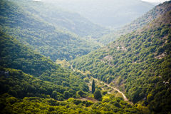Morning in Galilee Royalty Free Stock Photo