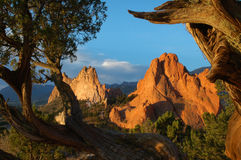 Morning in the Garden of the Gods. Early morning shot in Garden of the Gods preserve, in Colorado Springs, Colorado Stock Images