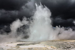 Morning Geyser Royalty Free Stock Images