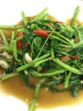 Morning glory with chilli. Morning glory fried with red Chilli garlic and oyster oil Stock Image
