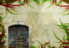Morning-glory frame. Frame made by plants on the old wall, in few different versions. With orton effects Stock Photos