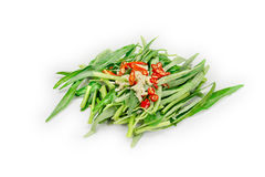 Morning glory with garlic and chili on white background.  Royalty Free Stock Photo