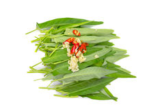 Morning glory with garlic and chili on white background.  Stock Photos