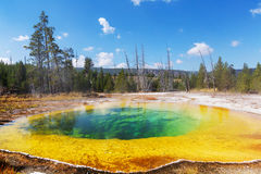 Morning Glory Pool. Colorful Morning Glory Pool - famous hot spring in the Yellowstone National Park, Wyoming, USA Royalty Free Stock Image