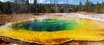 Morning Glory Pool. Colorful Morning Glory Pool - famous hot spring in the Yellowstone National Park, Wyoming, USA Royalty Free Stock Photo