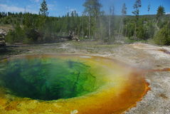 Morning Glory Pool, Yellowstone Stock Photos