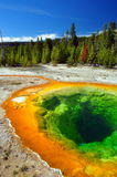 Morning Glory Pool, Yellowstone National Park Stock Images
