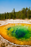 Morning Glory Pool in Yellowstone National Park Royalty Free Stock Photography