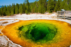 Morning Glory Pool in Yellowstone National Park Royalty Free Stock Image