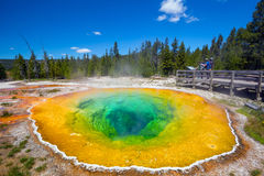 Morning Glory Pool in Yellowstone National Park of Wyoming Royalty Free Stock Photo