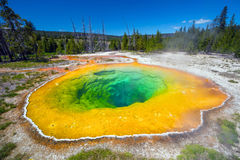 Morning Glory Pool in Yellowstone National Park of Wyoming Royalty Free Stock Photos