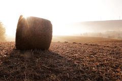Morning Glory Sunrise Part III Stock Photos