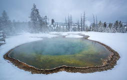 Morning Glory thermal pool, Yellowstone Stock Images