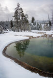 Morning Glory thermal pool, Yellowstone Royalty Free Stock Images