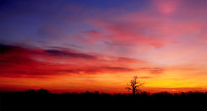 Morning Glow. A morning skyline with great colours royalty free stock photos