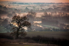 Morning glow across the fields and lakes Royalty Free Stock Photography