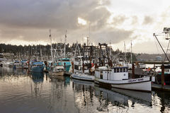 Morning glow over the fishing boats. Stock Photos