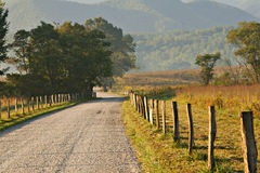 Morning Glow on Unpaved road Royalty Free Stock Image
