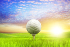 Morning golf Stock Image