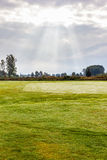 Morning on the golf course. A idyllic meadow or golf course in a sunny beautiful morning Stock Photography
