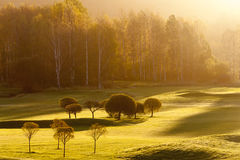 Morning on Golf Course Royalty Free Stock Photos