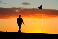 Morning golfer. A male golfer goes to remove the flag before he putts at sunrise Stock Image