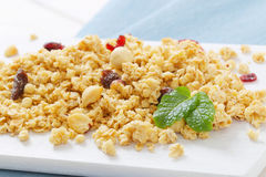 Morning granola with hazelnuts, raisins and cranberries Stock Photos
