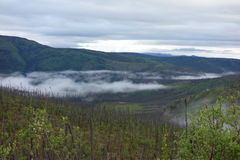 Morning ground fog Stock Photo