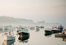 Morning harbor mist Stock Images