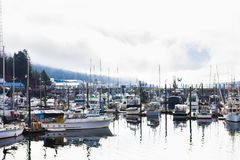 Morning harbor scene, private boats on calm water. Calm morning landscape of harbor piers brimming with fishing boats, Ketchikan, Alaska, USA stock photo