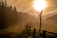 Morning Haze in Little Fatra Mountains Stock Images