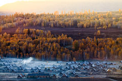 Morning of Hemu village, Kanas, xinjiang Royalty Free Stock Photo